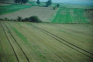 Аграрные расписки помогут расширению сельхозугодий на Ровенщине