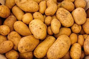 Как работает критическое мышление на примере картошки