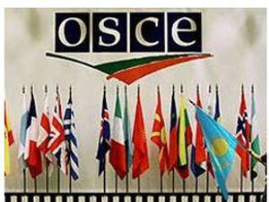 ОБСЕ рекомендует Украине освободить Тимошенко и Луценко