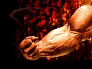 Сывороточный протеин и его роль в спорте