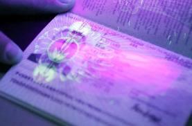 Биометрические паспорта: чипируют всех?