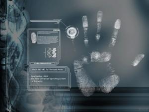 Электронные паспорта грозят хаосом в обществе