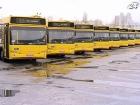 В Украине за этот год продали 256 тыс. единиц автотранспорта