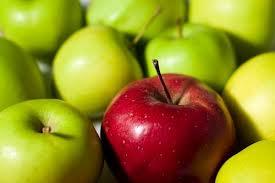 Огрызки прибыли: аграрии не смогут заработать на яблоках