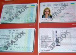 Из-за депутатов новых водительских удостоверений еще нет