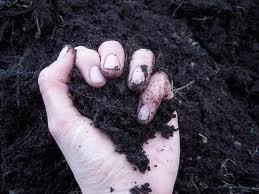 Земельный мораторий могут отменить в любой момент