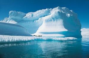 Арктические льды ужались до исторического минимума