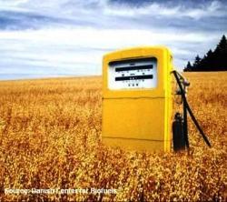 Украина начала выпускать свое автомобильное биотопливо