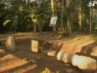 Найдена древнейшая могила цивилизации майя