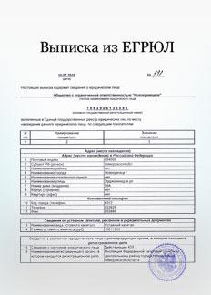 Возможность получения выписки из ЕГРЮЛ в режиме онлайн