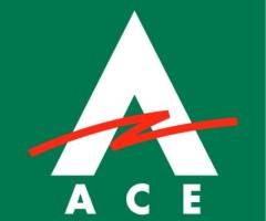 ACE Express наказали за создание долгов