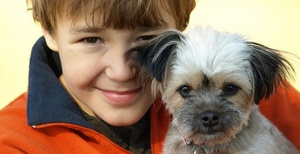 Ребенок и животное в доме – совместимо ли это?