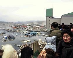 Ущерб от землетрясения в Японии может составить 34,6 млрд долл