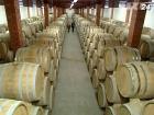 Италия признана крупнейшим производителем вина в мире