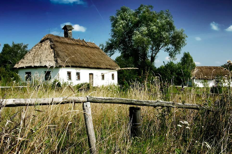 Куда движется украинское село