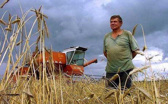 Зарубежный опыт дает шанс женщинам-фермерам, и они его используют