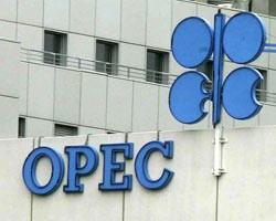 ОПЕК: Экспортеры компенсируют любые перебои в поставках нефти из Ливии