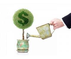 Инвестиции в сельхозсектор Беларуси