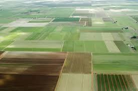 Украинскую землю продадут дважды