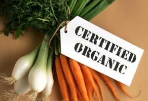 Как заработать на производстве органических продуктов