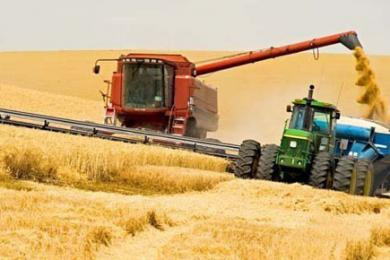 Китай инвестирует в сельское хозяйство