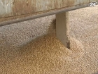 В Украине зерна осталось на 22% меньше прошлогоднего показателя
