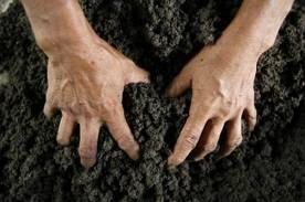 Азаров хочет поменять землю на еду