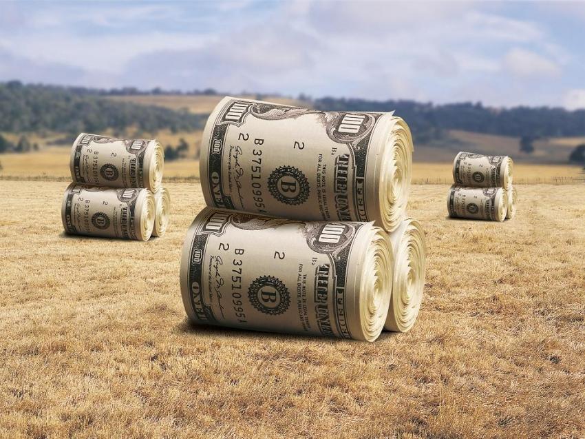 Земельний банк дасть нам можливість нефіскально наповнити держбюджет