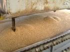 Из Украины можно будет экспортировать 5,5 млн т пшеницы