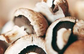 Сделки недели: грибы и лекарства