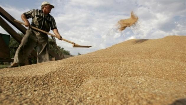 Винницкие аграрии работают на запланированный урожай