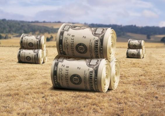 Три тренда в аграрно промышленном комплексе