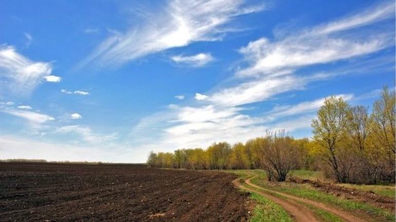 Среди украинцев провели опрос на тему продажи земли