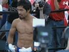 Бокс: Пакьяо усердно готовится к бою с Маркесом