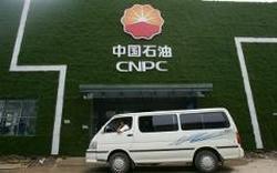 Китайская госкомпания CNPC займется разработкой нефтяного месторождения на территории Афганистана
