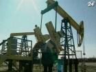 Украинский газ интересен крупным международным компаниям