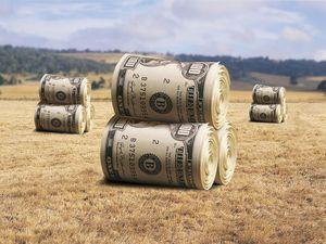 Для продажи земли сначала придумают «схемы»