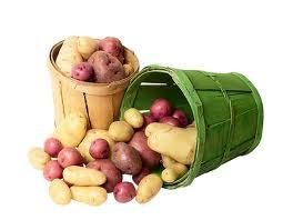 Крым обещает дешевый картофель