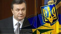 К всеобщему удивлению Украина сближается с НАТО